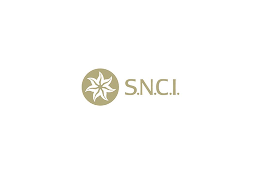 Société Nouvelle Pour Le Commerce Et L'industrie S.A.L